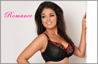 Curvy Kate Romance Collection