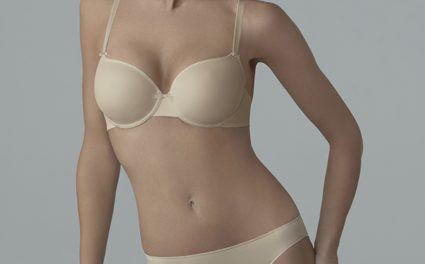 The Chantelle Basic T-shirt Bra
