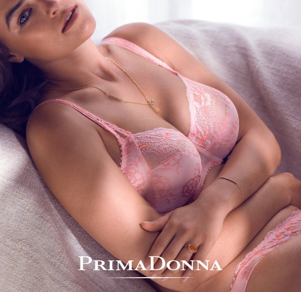 PrimaDonna_Delight_Summer_Rose_low-res-logo-2