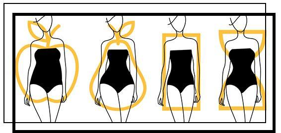 Womens Body Types