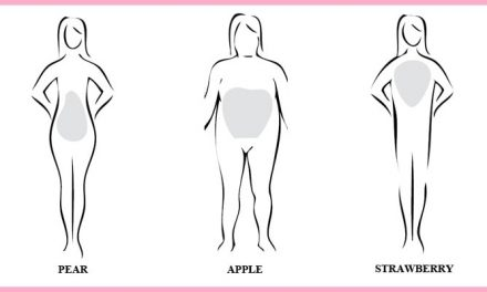 Plus Size Body Types & Bra Recommendations